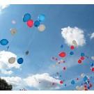 Wedstrijd ballonnen compleet