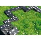 Domino Levensgroot
